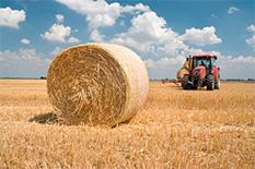 Agrariër