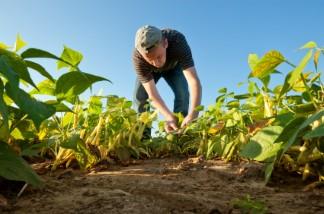Specialist tuin- en akkerbouw