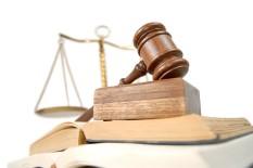 Juridische beroepen, openbaar bestuur en beleidsmedewerkers