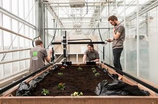 Tuinbouw en Akkerbouw